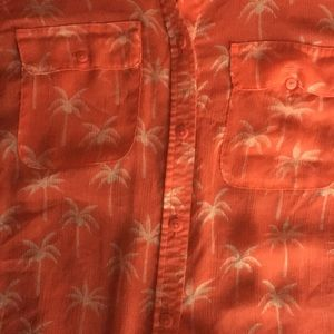 Palm trees sheer button up from American Eagle